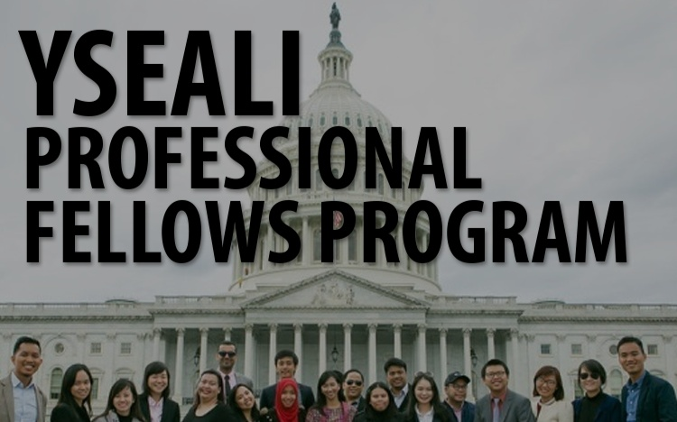 YSEALI Professional Fellows Program